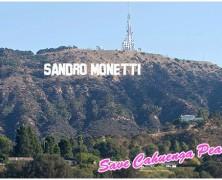 Contact Sandro